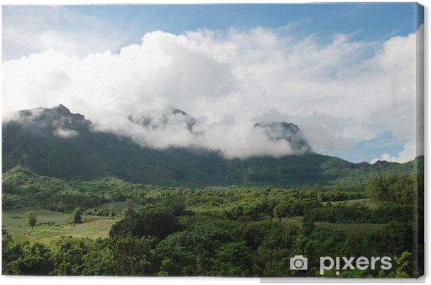 Leinwandbild Nuage, cirrus, cumulus, blue, sky - Ozeanien