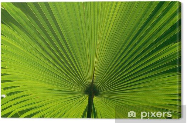 Leinwandbild Palm leaf - Asien