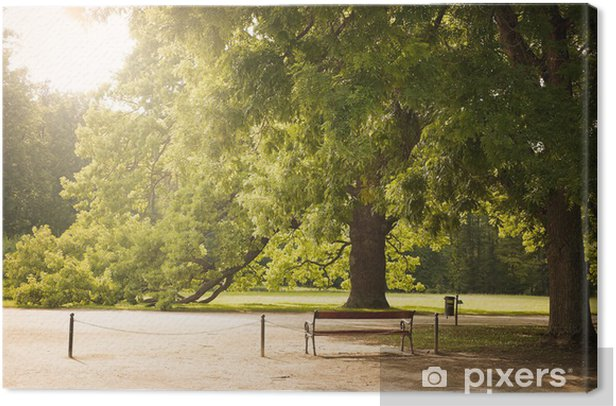 Leinwandbild Park - Jahreszeiten