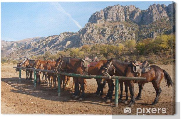 Leinwandbild Pferde an einen Pfosten -
