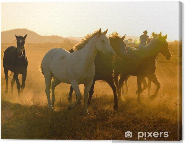 Leinwandbild Pferde in der Abenddämmerung - Landwirtschaft