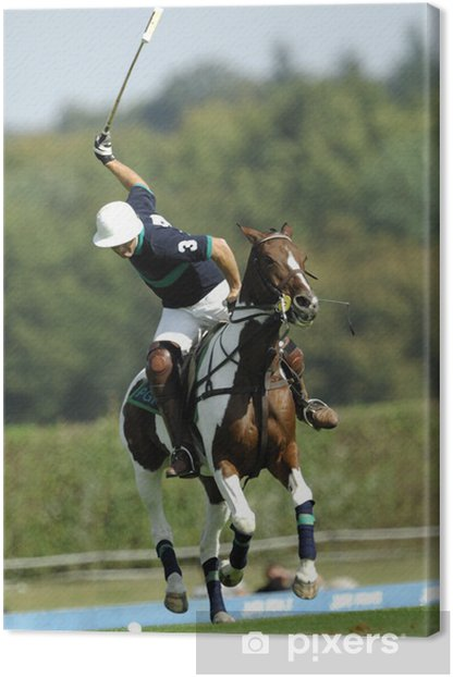 Leinwandbild Polo apremont - Einzelsportarten