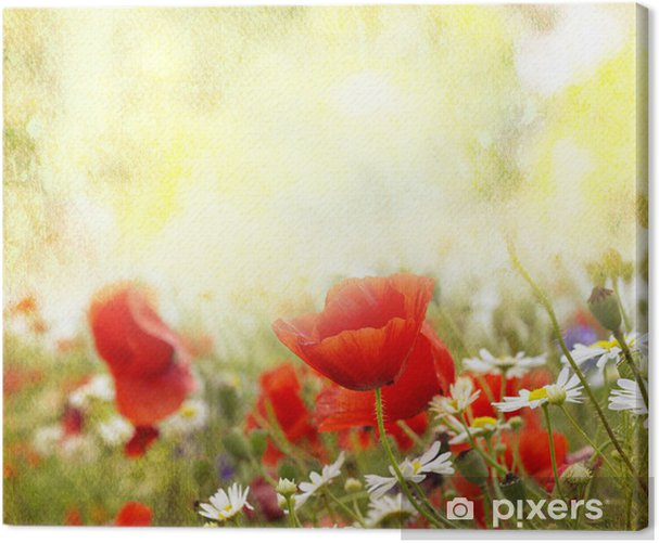Leinwandbild Poppy flowers - Themen