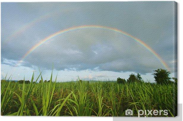 Leinwandbild Regenbogen - Himmel