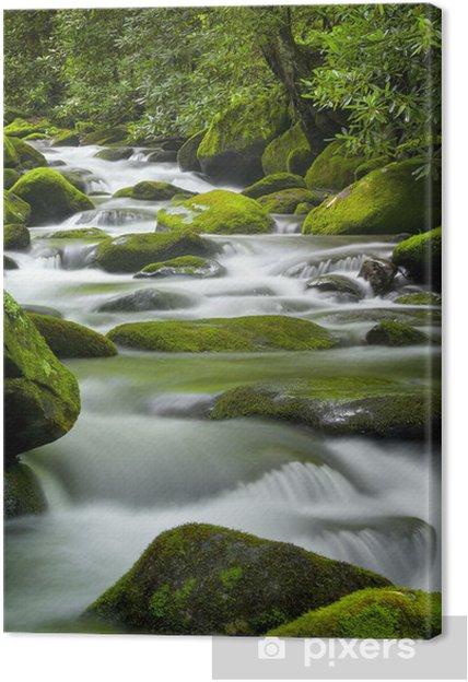 Leinwandbild Roaring Fork Creek, Smoky Mountains National Park - Wasser
