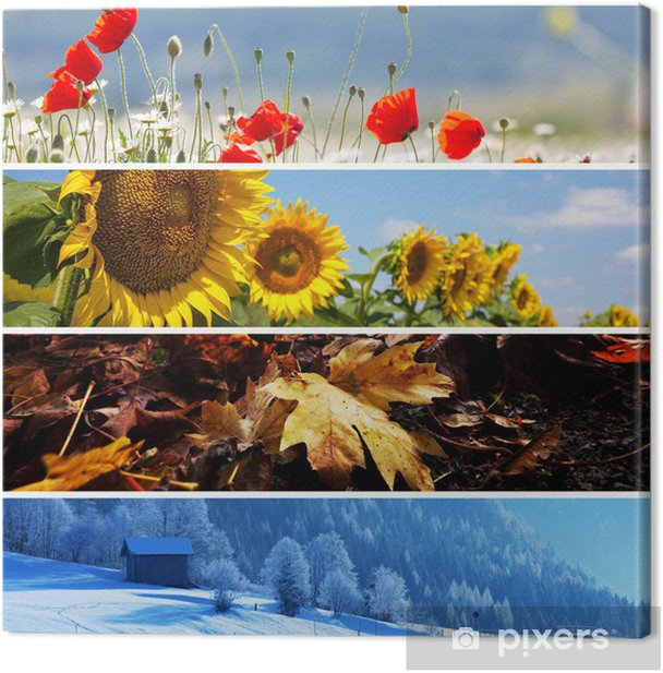 Leinwandbild Saison Collage - Landwirtschaft