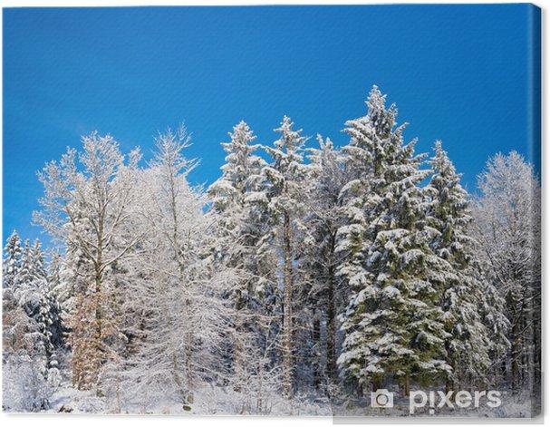 Leinwandbild Schneelandschaft - Jahreszeiten