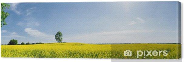 Leinwandbild Schöne Frühjahr Panorama - Jahreszeiten