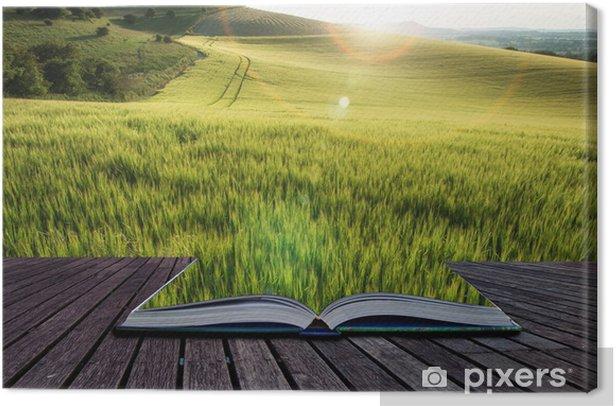 Leinwandbild Schöne Landschaft Weizenfeld im hellen Sommer Sonnenlicht evenin - Sonstige Gefühle