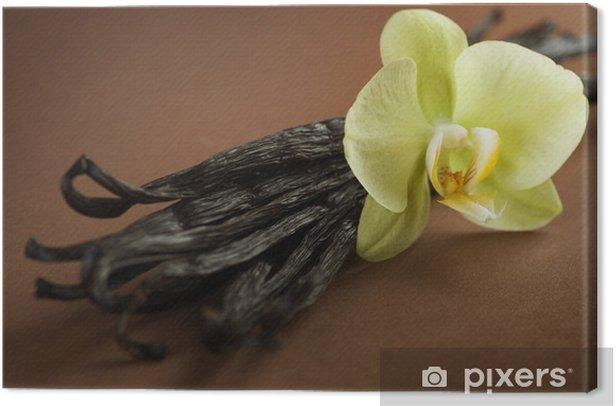 Leinwandbild Schöne Vanilla - Gerichte