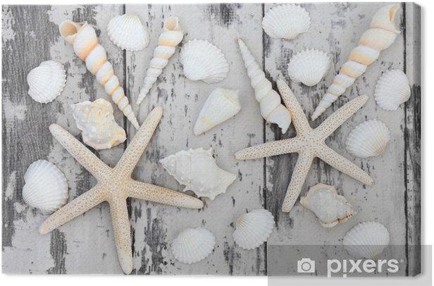 Leinwandbild Seashell Schönheit - Unterwasserwelt