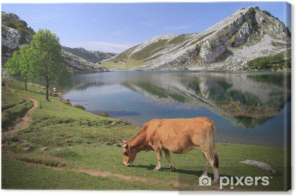 Leinwandbild See Enol Covadonga - Picos de Europa - Spanier - Europa