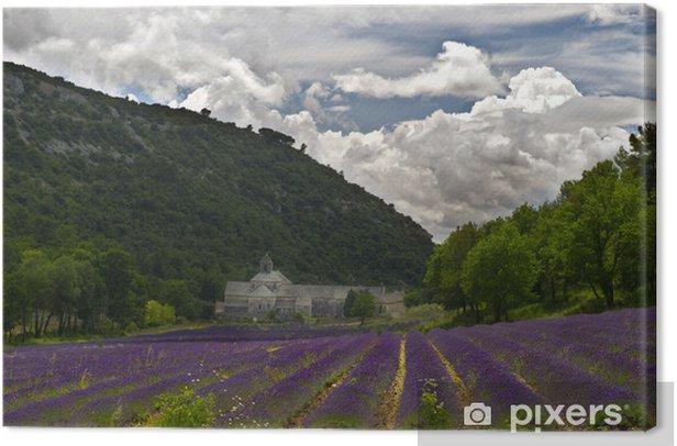 Leinwandbild Sénanque Abbey in Provence - Europa