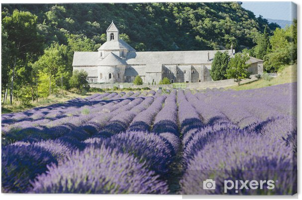 Leinwandbild Senanque Abtei mit Lavendelfeld, Provence, Frankreich - Themen