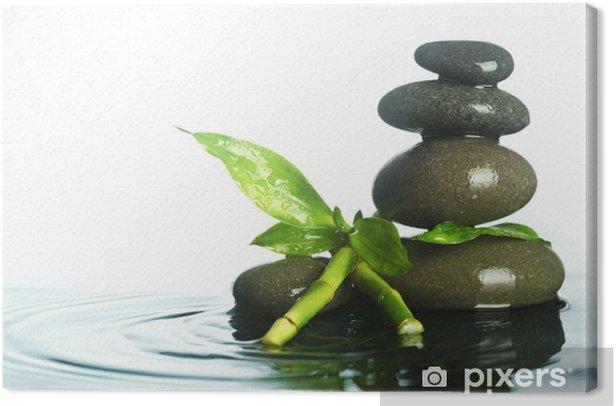 Leinwandbild Steine im Wasser - Pflanzen