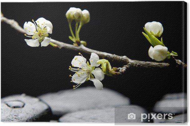Leinwandbild Stilleben mit rosa Blüte sakura - Beauty und Körperpflege
