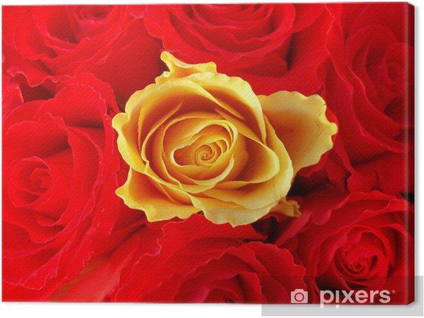 Leinwandbild Strauß roter Rosen mit einer einzigen gelben - Fröhlichkeit
