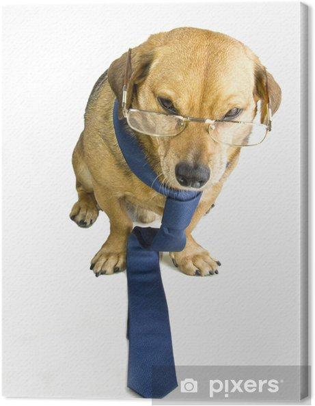 Leinwandbild Tollwütiger Hund