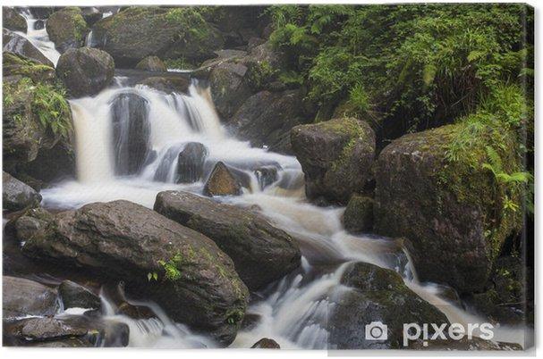 Leinwandbild Torc Wasserfall im Killarney Nationalpark - Europa
