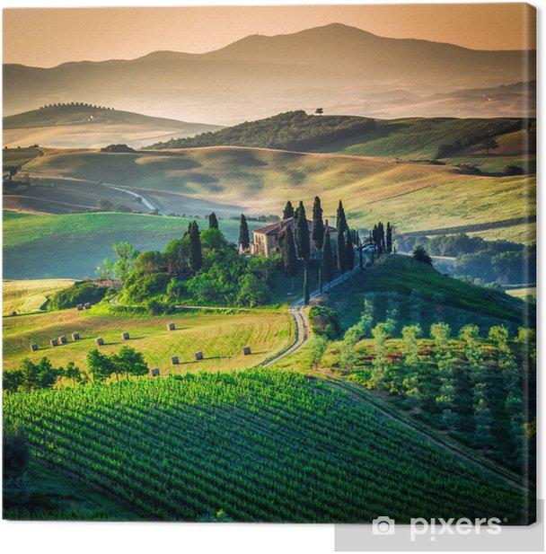 Leinwandbild Toskanischen - Wiesen, Felder und Gräser