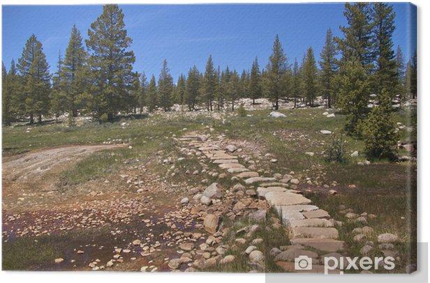 Leinwandbild Trail durch Soda Springs, Kaltwasser-Blubbern, Yosemite NP - Amerika