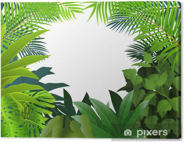 Leinwandbild Tropenwald Hintergrund - Bäume