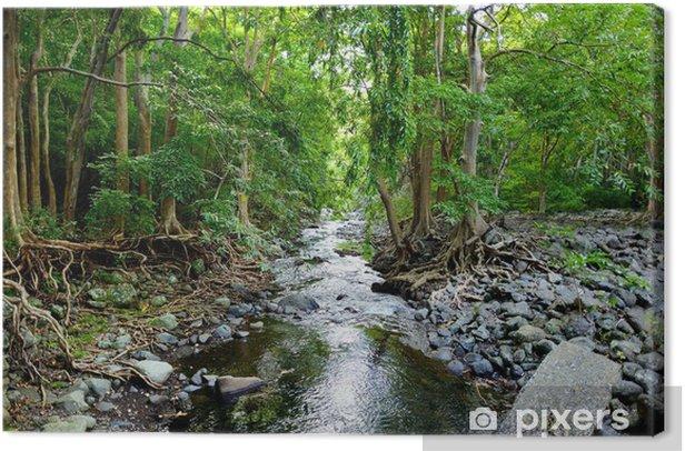 Leinwandbild Tropische Dschungel von Mauritius - Themen