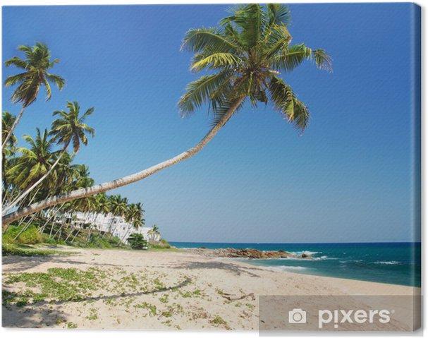 Leinwandbild Tropisches Paradies - Wasser