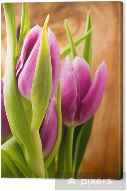 Leinwandbild Tulpen - Themen