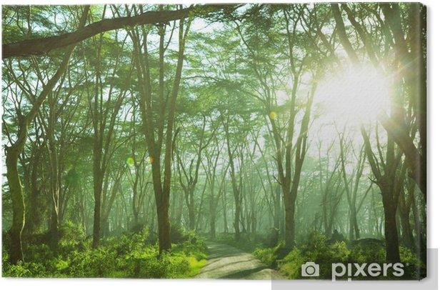 Leinwandbild Urwald - iStaging