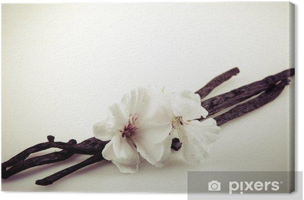 Leinwandbild Vanilleschote und Blumen - Pflanzen