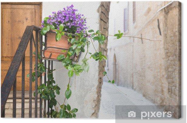 Leinwandbild Vase mit Blumen in der Gasse - Haus und Garten