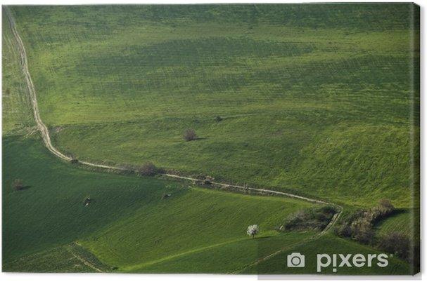 Leinwandbild Velluto verde - Land