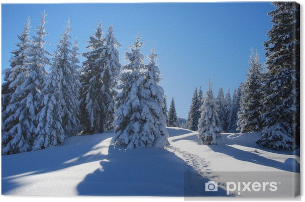 Leinwandbild Verschneiter wald - Jahreszeiten