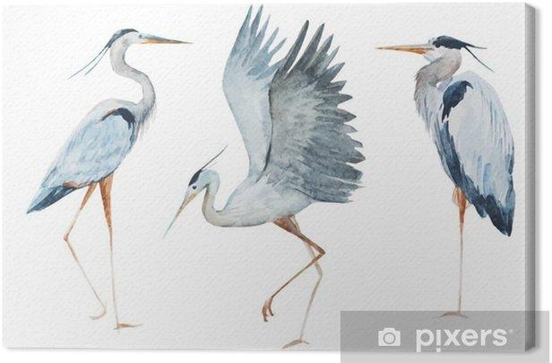 Leinwandbild Vögel Aquarell Reiher - Tiere