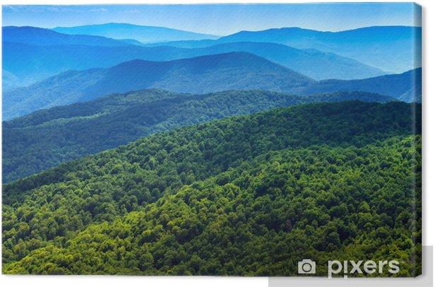 Leinwandbild Wald in Karpaten Landschaft. Gebirgspanorama Hintergrund. - Naturwunder