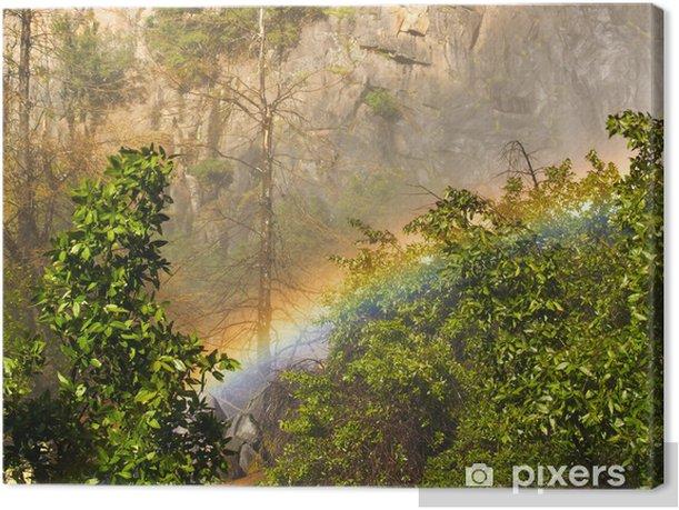 Leinwandbild Waldregenbogen - Amerika