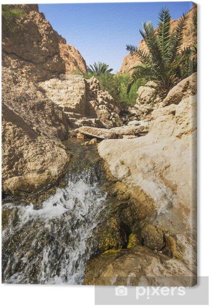 Leinwandbild Wasserfall in der Gebirgsoase Chebika, Tunesien, Afrika - Afrika
