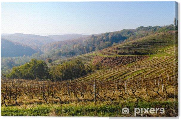 Leinwandbild Weinlage - Landwirtschaft