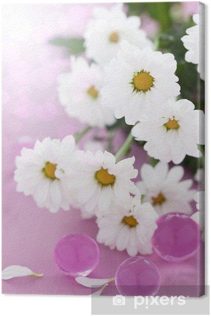 Leinwandbild Weiße Margeritenblüten - Beauty und Körperpflege
