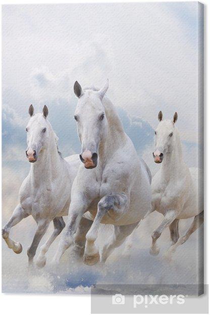 Leinwandbild Weiße Pferde im Staub - Stile