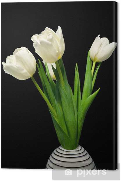 Leinwandbild Weiße Tulpen (weiße Tulpen in einer Vase) - Blumen