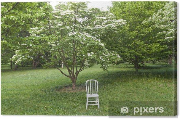 Leinwandbild Weißer Stuhl Im Park Bereit Für Foto Shooting