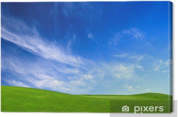 Leinwandbild Wiese grün - Jahreszeiten