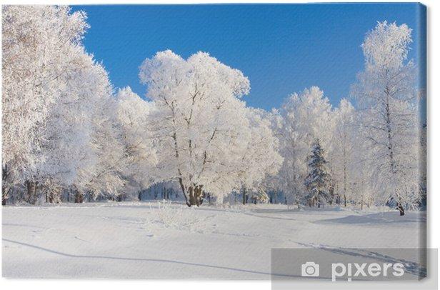 Leinwandbild Winter landschaft - Wälder