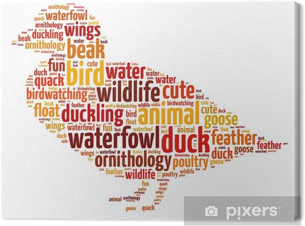 Leinwandbild Worte Illustration einer Ente auf weißem Hintergrund - Vögel