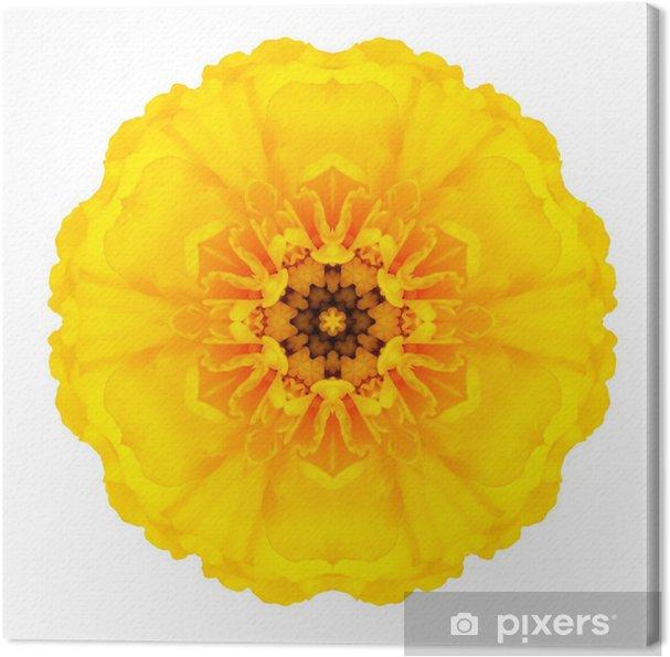 Leinwandbild Yellow Concentric Marigold Mandala Blume isoliert auf weiß - Blumen