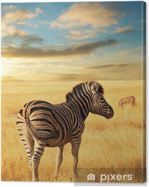 Leinwandbild Zebra - Themen