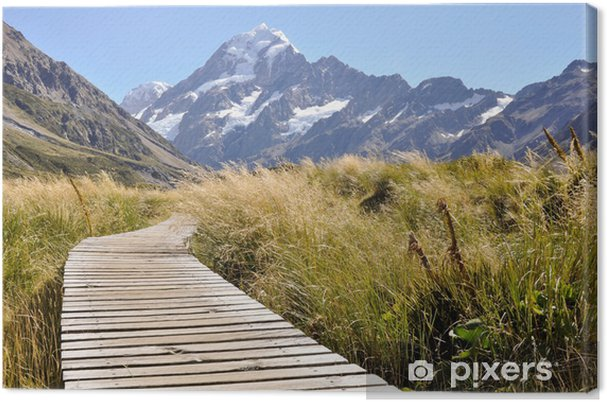 Lerretsbilde Boardwalk mot Mount Cook, New Zealand - Oseania