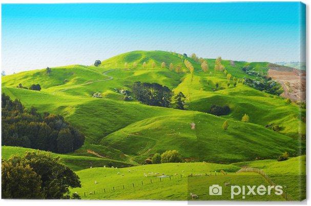 Lerretsbilde Hills of New Zealand -